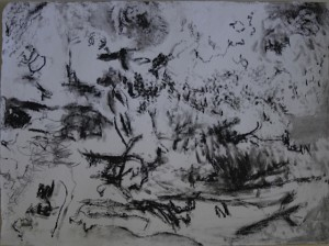 "'La Selva Mexicana', charcoal on paper, 22"" x 30"", 2014"